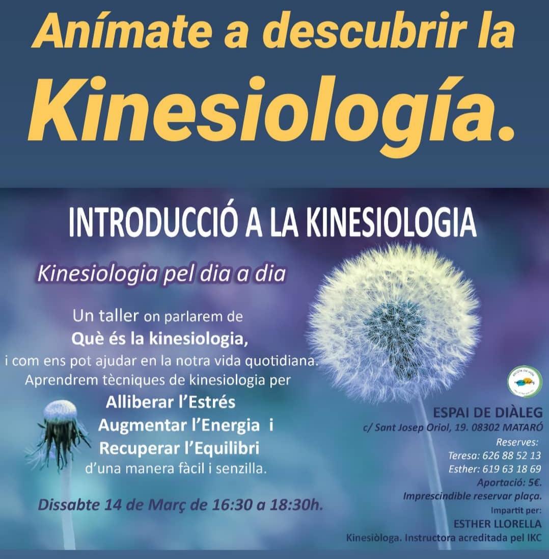 Kinesiologia, Flores de Bach, Reiki